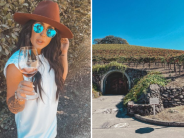 chelsea with with wine getaway